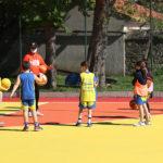 Riparte Svevo Basket